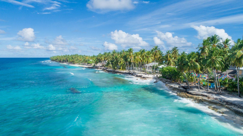 砂浜と椰子の木